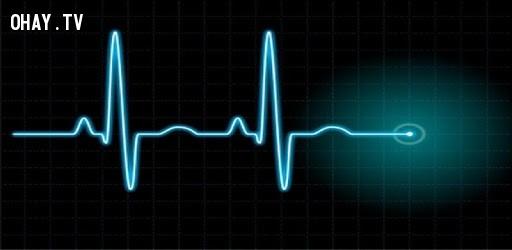 Khi nào tôi sẽ chết? (49.500 lượt mỗi tháng),câu hỏi ngớ ngẩn,google
