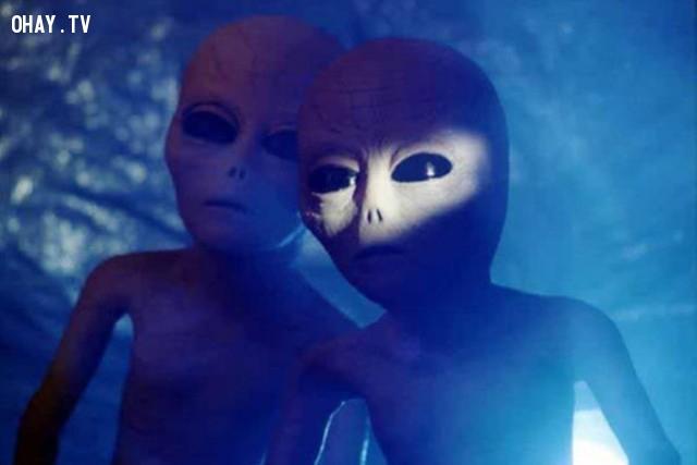 Người ngoài hành tinh có tồn tại không? (49.500 lượt mỗi tháng),câu hỏi ngớ ngẩn,google