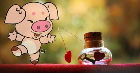 25 điều Mẹ dặn đừng bao giờ yêu người tuổi Hợi