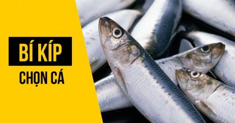 6 bước giúp bạn không chọn nhầm cá ươn