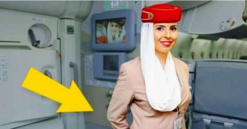 Tại sao tiếp viên hàng không lại để tay ra sau lưng khi đón chúng ta lên máy bay? Rất thú vị!