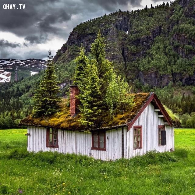 Một ngôi nhà ở nông thôn, Na Uy,địa điểm hoang vắng