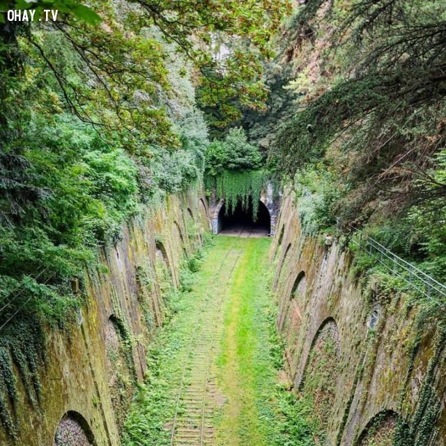 Một đường hầm đường sắt bị lãng quên ở Paris, Pháp,địa điểm hoang vắng
