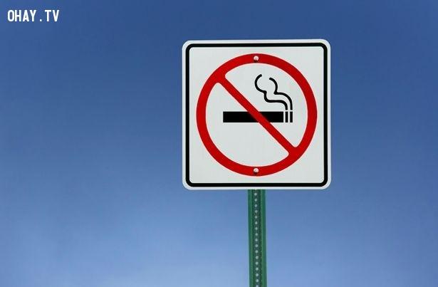 Không hút thuốc,cải thiện trí nhớ,não bộ