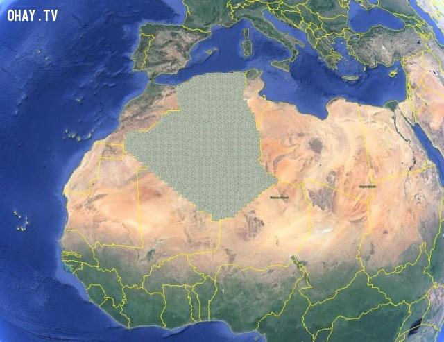 Che phủ toàn bộ đất nước Algeria,những điều thú vị trong cuộc sống,mua cả thế giới