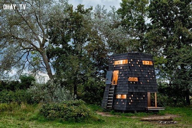 Nơi trú ẩn cho những ai không thích làm gì,thiết kế độc đáo,nhà trong rừng