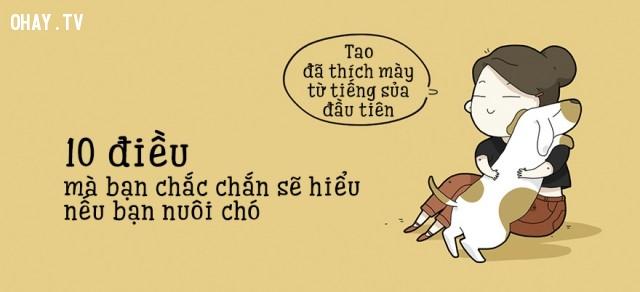 ,thú cưng,nuôi chó