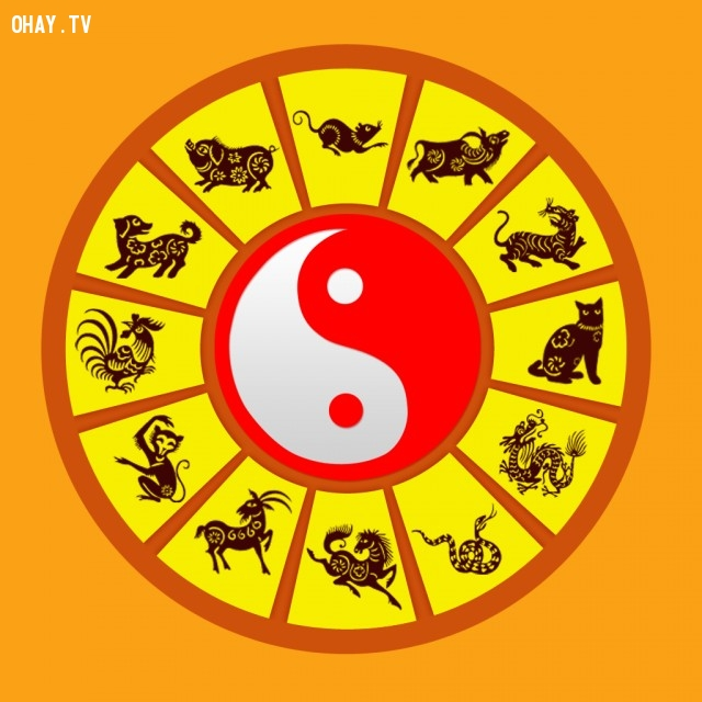 ,xem bói,12 con giáp,ý nghĩa của 12 con giáp,các cung hoàng đạo,số năm có ý nghĩa gì với bạn,ý nghĩa con số 5 trong 12 con giáp