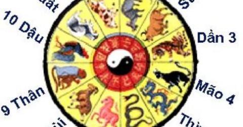 Ý nghĩa con số 5 trong mười 12 con giáp