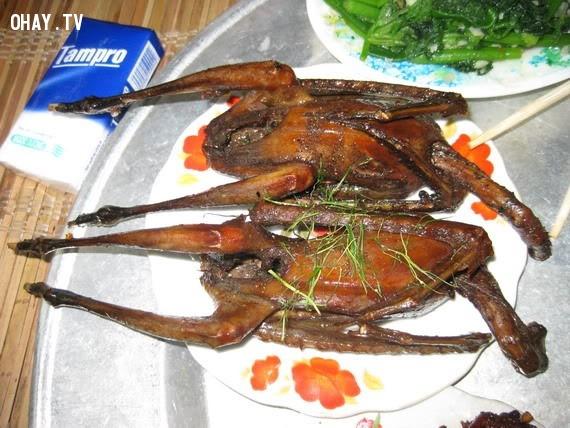 Món thị cò nướng.,miền Trung,bẫy cò,bẫy chim