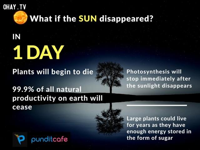 3. Nếu mặt trời biến mất trong 1 ngày,những điều thú vị trong cuộc sống,ánh sáng mặt trời,sự thật thú vị,trái đất,thiên văn học,khoa học vũ trụ