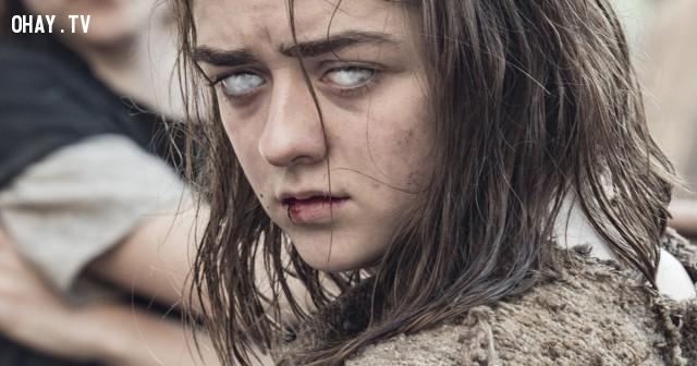 Arya Stark,trò chơi vương quyền,game of thrones