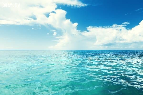 Hình 1: Đại dương rộng lớn,trắc nghiệm vui,trắc nghiệm tính cách