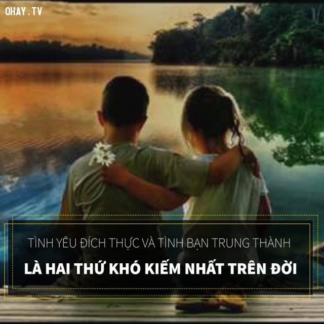 Tình yêu đích thực và tình bạn trung thành là hai thứ khó kiếm nhất trên đời.,câu nói hay,câu nói truyền nghị lực sống,triết lý sống