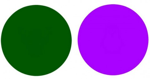 Thử tài tinh mắt: Thách bạn nhìn được hết hình ảnh ẩn sau những vòng tròn này