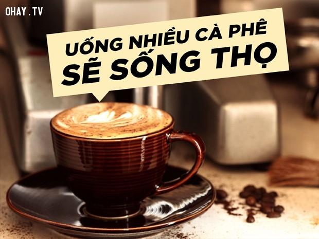 Tăng tuổi thọ,uống cà phê