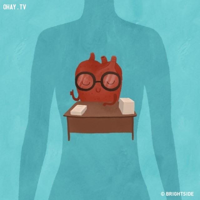 6.  Cho bạn một trái tim khỏe mạnh hơn,tư thế ngủ,ngủ nghiêng bên trái