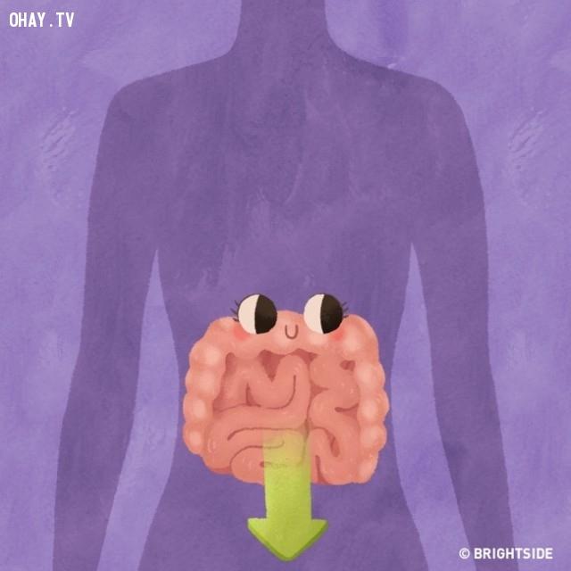 3. Thúc đẩy loại bỏ các chất thải khỏi cơ thể,tư thế ngủ,ngủ nghiêng bên trái