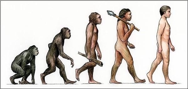 5. Loài người là do tiến hóa ngẫu nhiên,loài người,giả thuyết