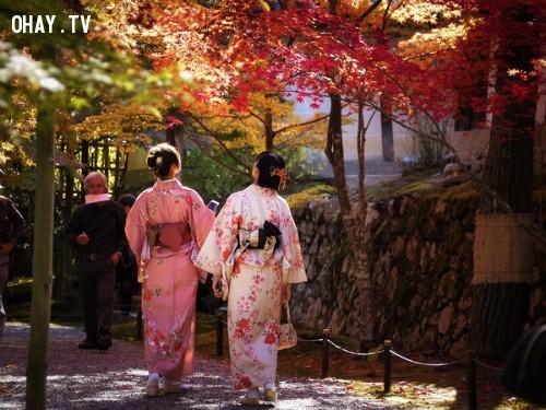 ,mua thu paris,mùa thu Hà Nội,mùa thu Nhật Bản