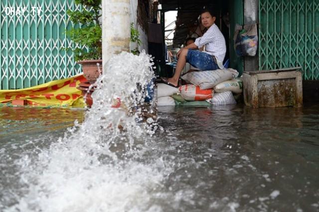 Một hộ gia đình phải dùng máy bơm bơm nước ra khỏi nhà.,mùa mưa,ngập nước,cấp thoát nước,thủy triều