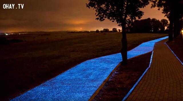 Trong khi con đường phát sáng ở Ba Lan lại sử dụng năng lượng miễn phí của mặt trời.,con đường phát sáng,năng lượng mặt trời,ba lan