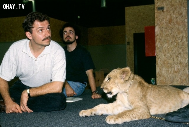 7. Chuyên gia bảo tồn động vật hoang dã Jim Fowler đã mang một vài loại động vật hoang dã đến phim trường, bao gồm sư tử và chim mỏ sừng để các họa sĩ có thể nghiên cứu các chuyển động của chúng.,vua sư tử,The Lion King,sự thật thú vị,những điều thú vị trong cuộc sống,phim hoạt hình Disney