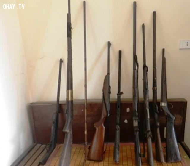 ,súng hoa cải,vũ khí