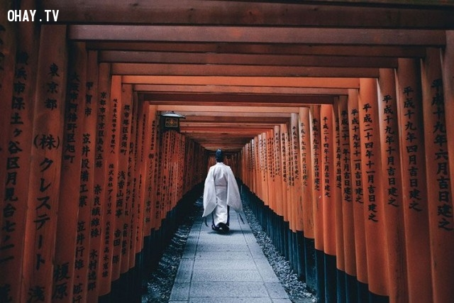 ,Nhật Bản,Ảnh đẹp,hiện đại,truyền thống