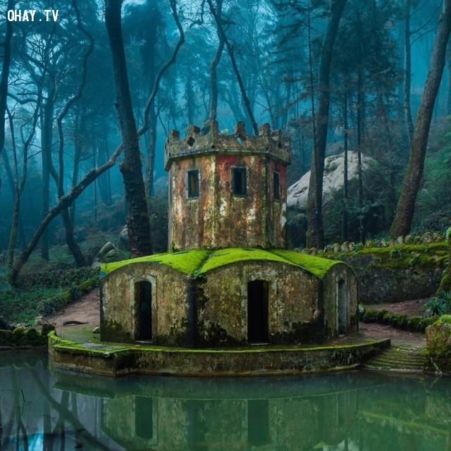 Di tích của một lâu đài cổ ở Sintra, Bồ Đào Nha,nhà hoang,nơi bỏ hoang