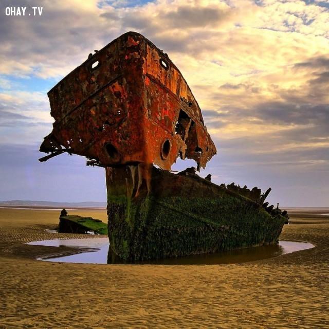 Một bộ xương một con tàu ma bị mắc kẹt ở County Louth, Ireland,nhà hoang,nơi bỏ hoang