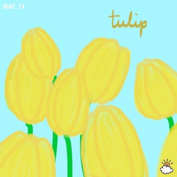 1. Hoa tulip,trắc nghiệm vui,trắc nghiệm tính cách,bói dạo,loài hoa yêu thích