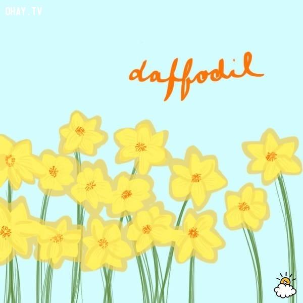 8. Hoa thủy tiên,trắc nghiệm vui,trắc nghiệm tính cách,bói dạo,loài hoa yêu thích