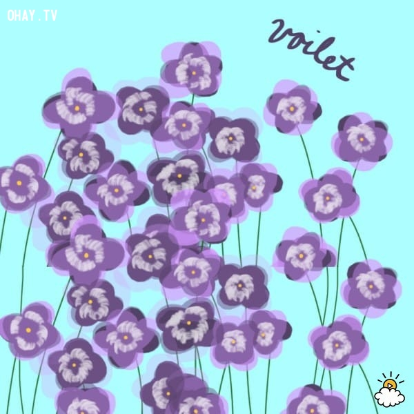 5. Hoa violet,trắc nghiệm vui,trắc nghiệm tính cách,bói dạo,loài hoa yêu thích