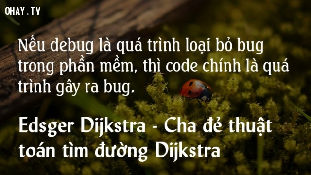 Nếu debug là quá trình loại bỏ bug trong phần mềm, thì code chính là quá trình gây ra bug,lập trình viên,nghề lập trình
