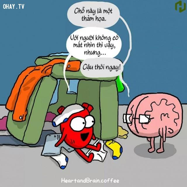 4. Tim có lý lẽ của Tim, Não có lý lẽ của Não.,ảnh minh họa,ảnh hài,suy ngẫm,trái tim,bộ não