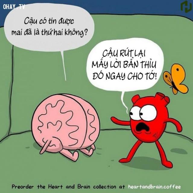 5. Cả Tim và Não đều sợ ngày thứ hai.,ảnh minh họa,ảnh hài,suy ngẫm,trái tim,bộ não