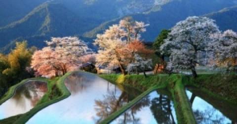 12 bức ảnh phong cảnh ngập tràn màu sắc được tạo ra bởi Mẹ Thiên Nhiên