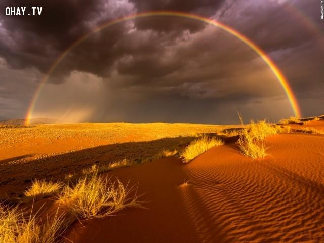 Mưa trên xa mạc – Bức ảnh đạt giải thưởng nhiếp ảnh năm 2016, được chụp tại Namibia .,Cảnh đẹp thế giới