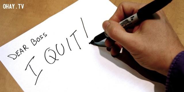 Chấp nhận và hành động,nhảy việc,kỹ năng công việc,thất bại,chọn nghề,việc làm