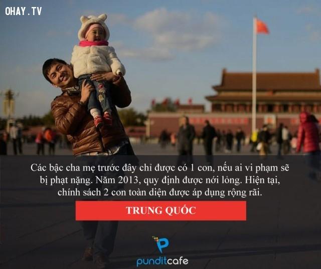 Kế hoạch hóa gia đình - Trung Quốc,luật lệ,những điều thú vị trong cuộc sống,chuyện lạ