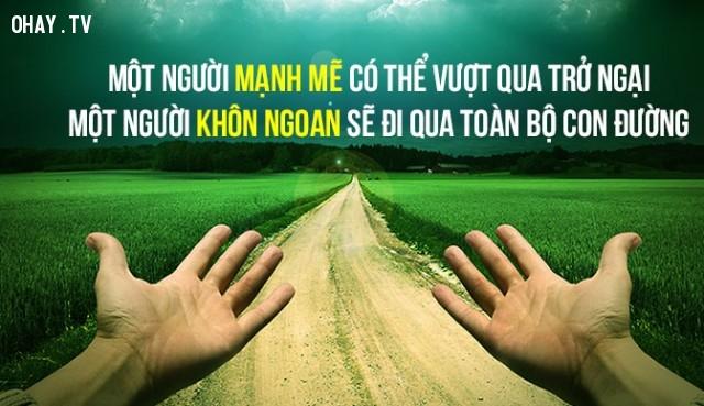 7. Một người mạnh mẽ có thể vượt qua trở ngại; còn một người khôn ngoan sẽ đi qua toàn bộ con đường.,câu nói hay,câu nói trí tuệ,khôn ngoan,do thái