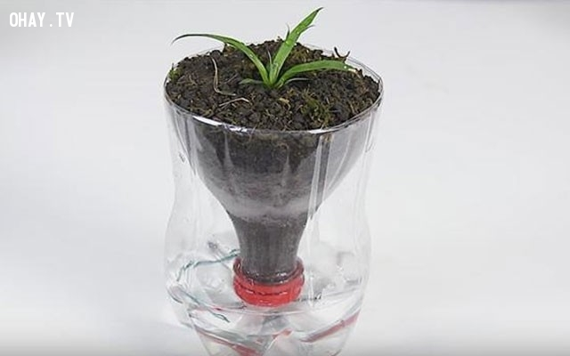 ,vỏ chai nhựa,tái sử dụng,tái chế vỏ chai