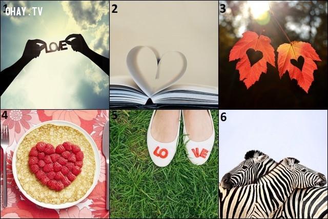 Chọn bức hình bạn thích nhất và kéo xuống dưới xem nó tiết lộ điều gì về suy nghĩ của bạn với tình yêu nhé!,tình yêu,trắc nghiệm vui
