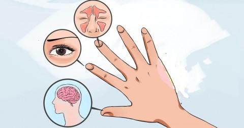 Cách xoa 5 ngón tay thổi bay trăm bệnh chỉ trong 60 giây
