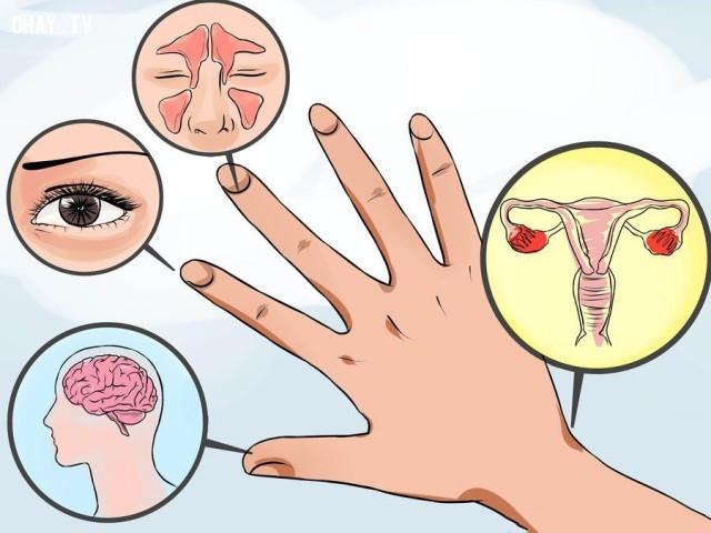 ,ngón tay,bấm huyệt,mẹo sức khỏe,xoa bóp