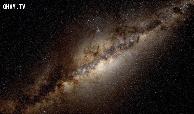 Nếu mặt trời có kích thước bằng một tế bào bạch cầu, dải Ngân Hà sẽ lớn bằng cả nước Mỹ,sự thực,facts,những điều thú vị trong cuộc sống