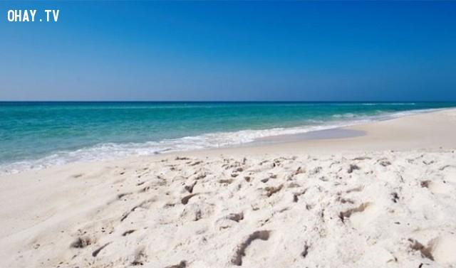 Có nhiều sao trong vũ trụ hơn cát ở tất cả bãi biển trên Trái Đất,sự thực,facts,những điều thú vị trong cuộc sống
