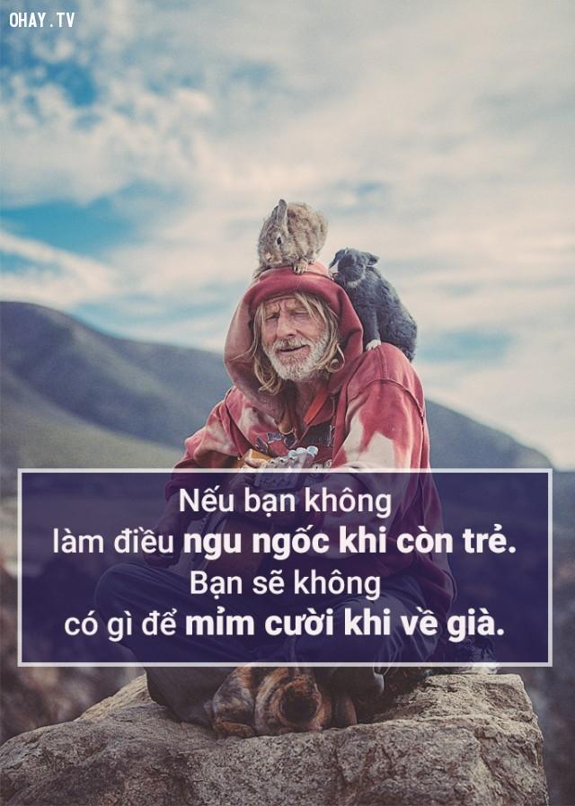 Nếu bạn không làm điều ngu ngốc khi còn trẻ, bạn sẽ không có gì để mỉm cười khi về già.,câu nói hay,triết lý cuộc sống,suy ngẫm