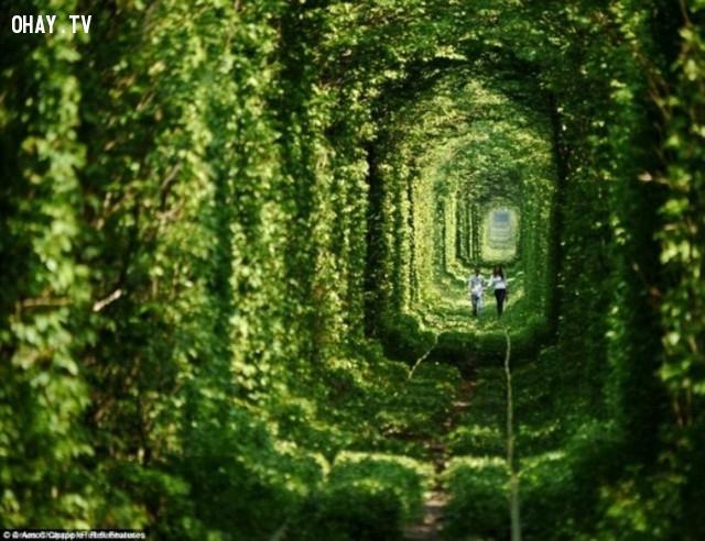 Đường hầm tình yêu - Ukraine,